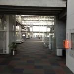 大学の中2